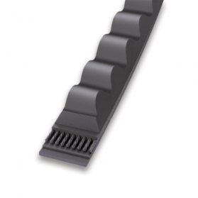 09113424 Flankenoffene Keilriemen XPC Standardleistung
